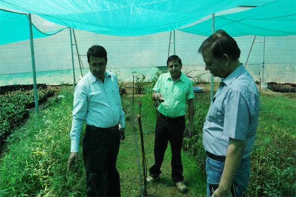 Green Bamboo Nursery Regd Is Plantation And Unit Owned Managed By Director Mr Shubhash Bhatia We Believe In The High Quality Standard